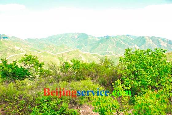 Photo of Badaling Great Wall Beijing 92