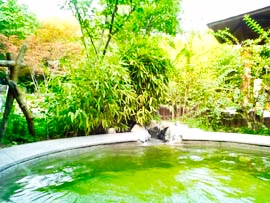 Photo of hotspring resort